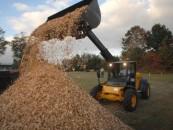 Biokuro kainas mažina šiltesni nei tikėtasi orai