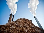 Biokuro kaina biržoje – mažiausia per pusmetį