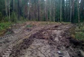 Miško kelių savininkai turi teisę uždaryti kelią