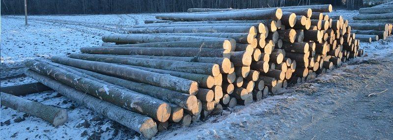 perkame mediena