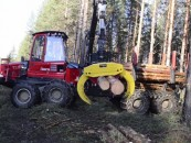 Naujiena medienos sortimentavime