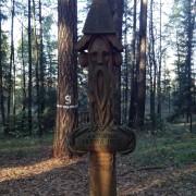 auksciausias Lietuvos medis