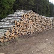perka tarine mediena