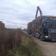 perka tarine mediena Pakruojo