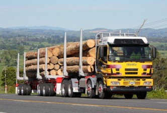 Nuo rugpjūčio 1 įsigaliojo palankesnė medienos gabenimo tvarka